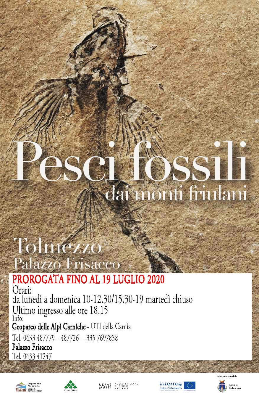 pesci fossili_riapertura