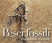 pesci fossili_riapertura_small